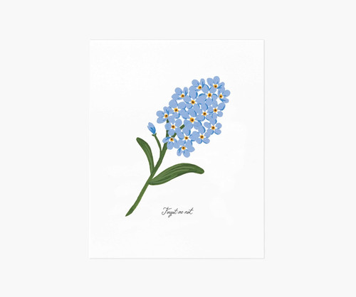 Forget-Me-Not Art Print 8x10
