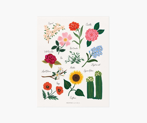 Florals of the US Art Print 8x10