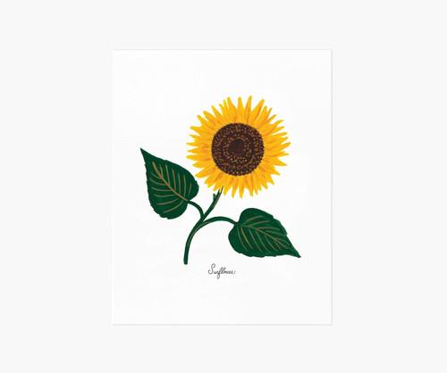 Sunflower Art Print 8x10