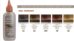 Clairol Beautiful Collections Advanced Gray Solution