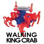 kingcrab.jpg