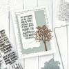 Bookmarks & More Dies