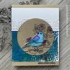 Birds & Blooms Clear Stamp Set