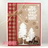 Thrill of Hope Clear Stamp Set