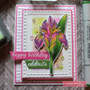 Happy Irises Clear Stamp Set