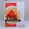 Spring Remix: Beautiful Birds Clear Stamp Set