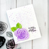 True Beauty Clear Stamp Set