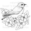 Bluebird Digital Stamp