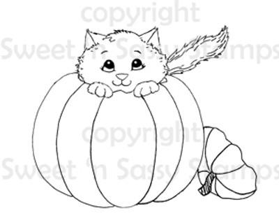 Pumpkin Kitty Digital Stamp