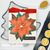 Poinsettia Greetings Clear Stamp Set