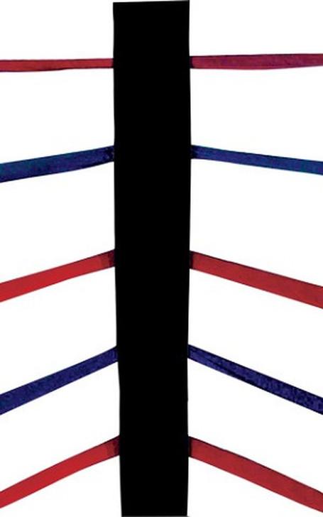 PROLAST MMA 5 Rope Corner Cushions