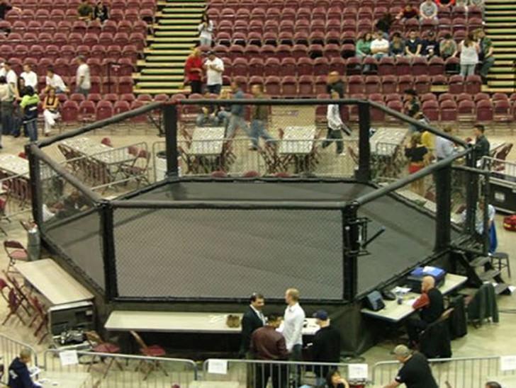 PROLAST Hexagon MMA Cage