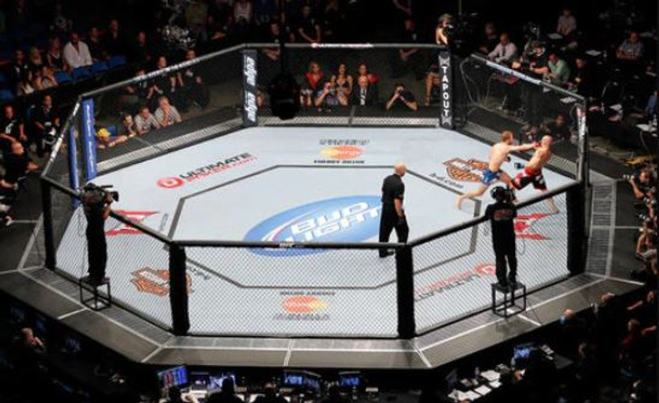 PRO MMA 30' X 30' OCTAGON MMA CAGE