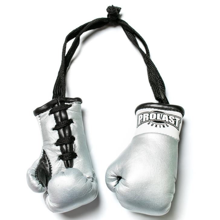 PROLAST Luxury Leather Titanium Mini Boxing Gloves