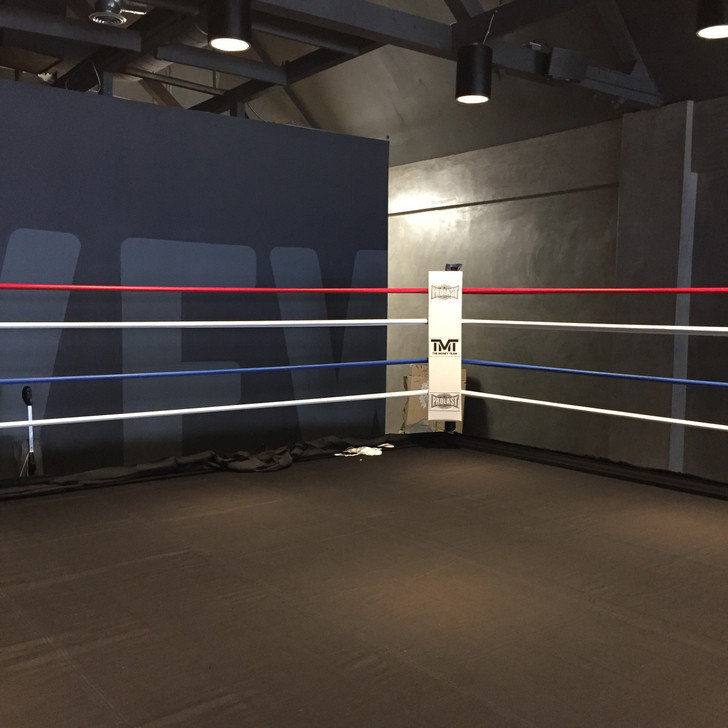 12' X 12' Boxing Ring With Complete Wood