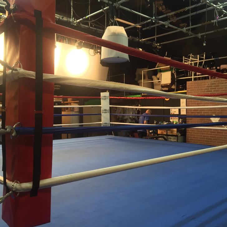 PROLAST 8' X 8' Professional Boxing Ring