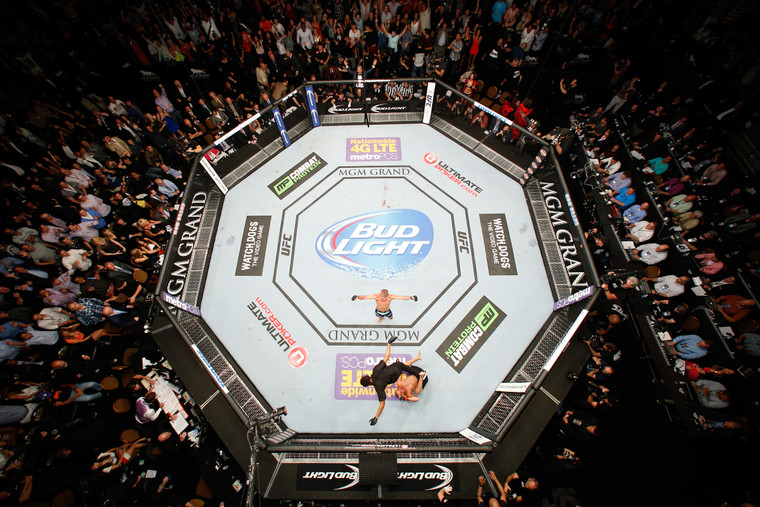 PRO COMBAT MMA Octagon Competition Cage