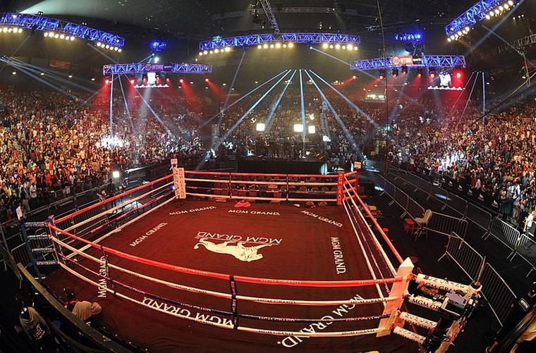 PROLAST® Fight Night Boxing Ring