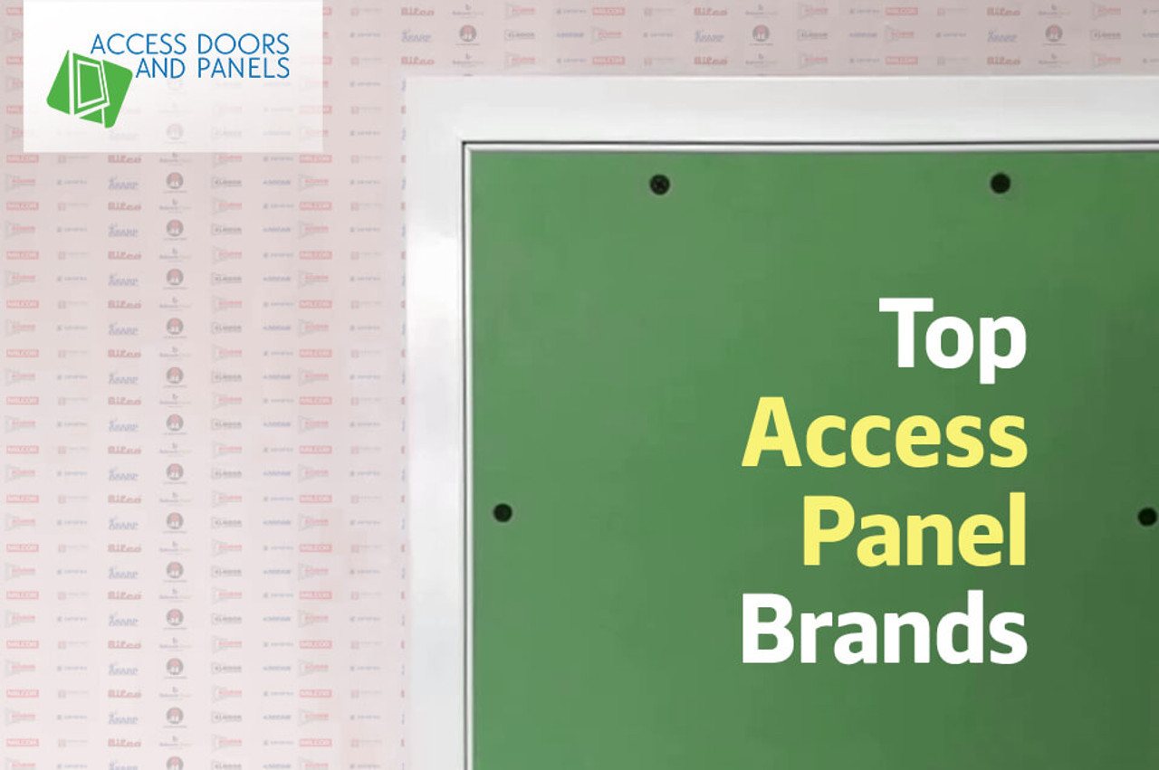 Top Access Panel Brands