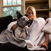 SYB EMF protection blanket  works for dog and his person.