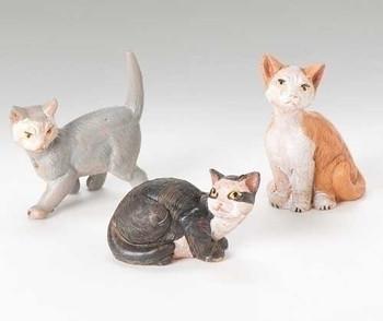 CAT FAMILY - 51518