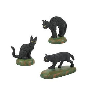 A CLOWDER OF BLACK CATS-6007711