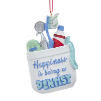 DENTIST SUPPLIES BAG
