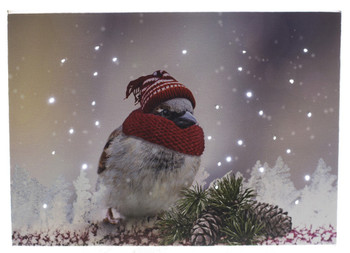 BIRD W/ HAT & SCARF