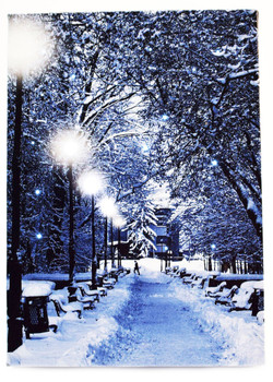 SNOW COVERED PATH W/ LIGHTPOST