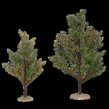 SOUTHERN OAK TREES