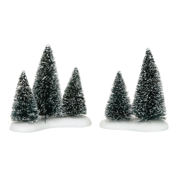 SISAL TREE GROVES - 4057613