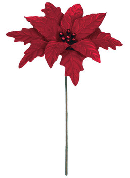 POINSETTIA PICK