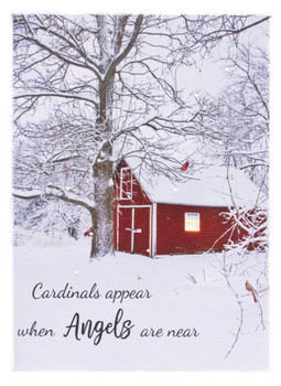 CARDINAL ANGEL - OSW207959