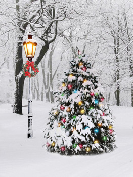 LIGHTED TREE - OSW208144