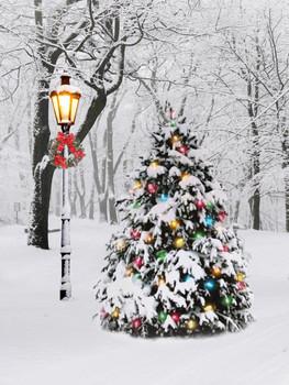 LIGHTED TREE - OSW208144