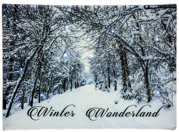 WINTER WONDERLAND - OSW177836