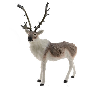 PLUSH DEER WITH ANTLERS