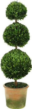 TRIPLE BALL BOXWOOD TOPIARY 42IN - 10-00914