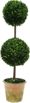 TALL DOUBLE BOXWOOD TOPIARY 42IN. - 10-00910