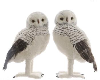 XL PLUSH OWL