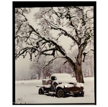 SNOW COVERED TRUCK UNDER TREE - OSW176515