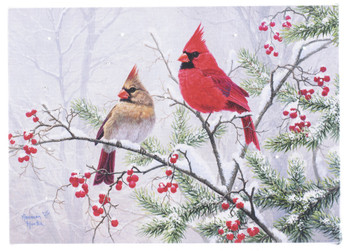 TWO CARDINALS - OSW208555