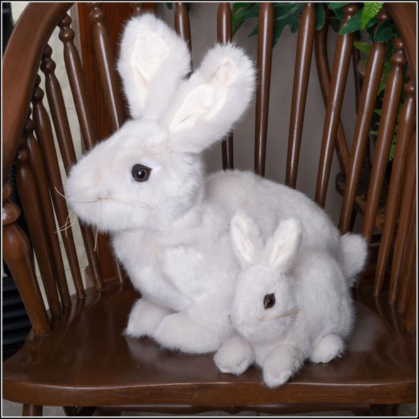 ditz gray bunnies, soft