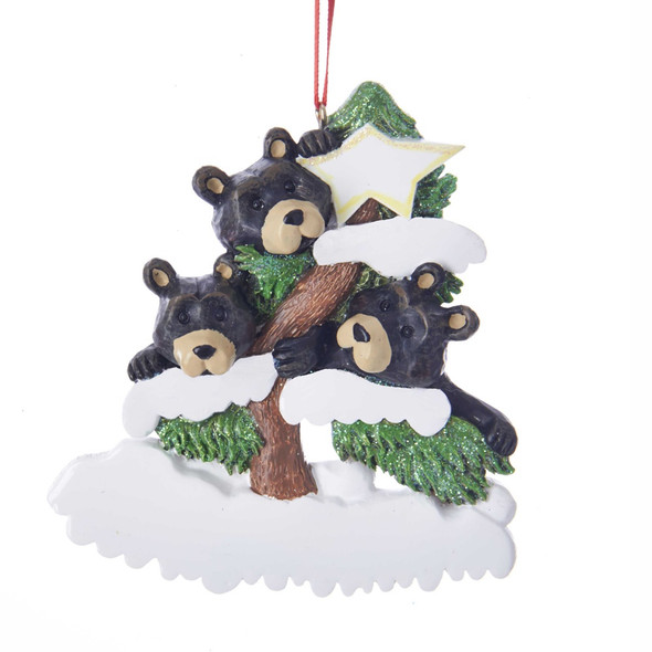3 BEAR FAMILY