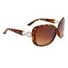 Diamond™ Eyewear DI6008 Tortoise