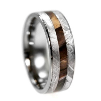 8 mm Titanium with Petrified Wood and Gibeon Meteorite Wedding Ring - PW110M