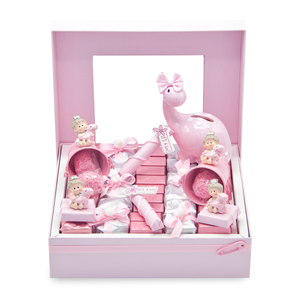 BABY DINO - Dino Girl Collection Window Box