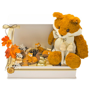 Ivory magnet gift box open with a plush fox on a bed of individually wrapped chocolates in ivory and metallic foil and four fox decorations and baby boy acrylic white signs