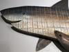 Great White Shark Metal Wall Decor
