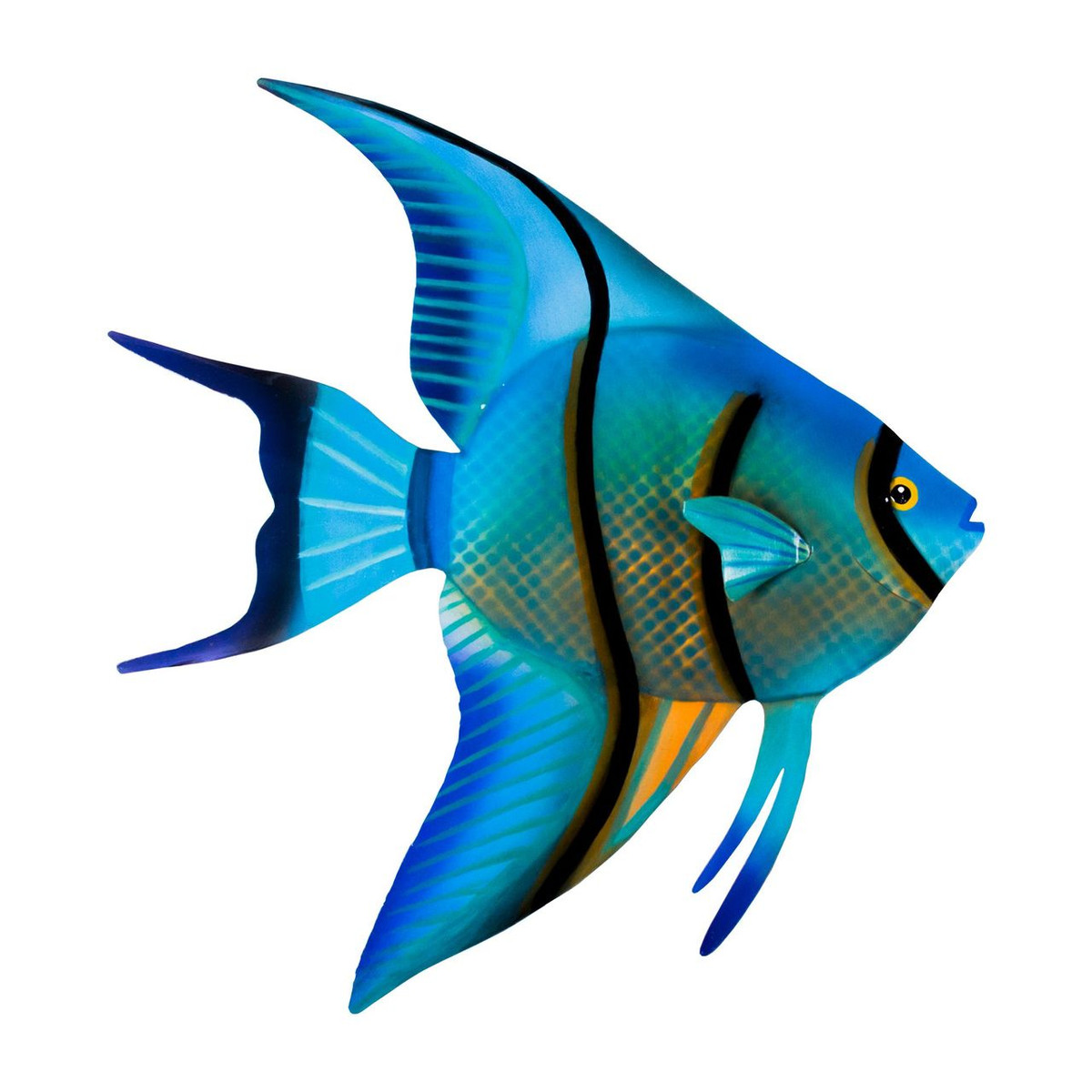Angelfish face right OS144